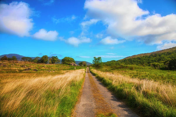 Photograph - The Wicklow Way Painting by Debra and Dave Vanderlaan