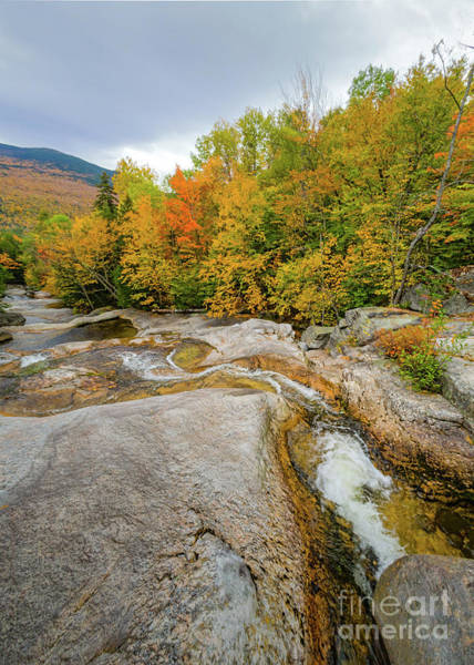 Photograph - The Wight Brook Flowing Down Step Falls, Newry, Maine #40133 by John Bald
