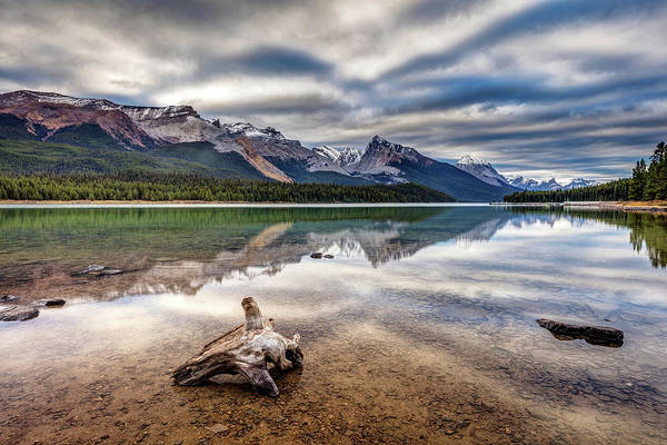 Photograph - The Wild Shores Of Maligne Lake by Pierre Leclerc Photography