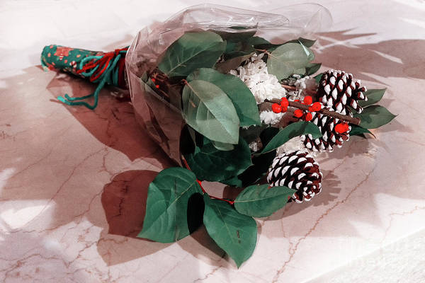 Photograph - The Winter Bouquet On The Marble by Marina Usmanskaya