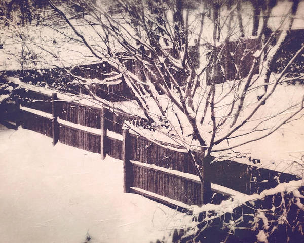 Photograph - The Winter Of My Content by Susan Maxwell Schmidt