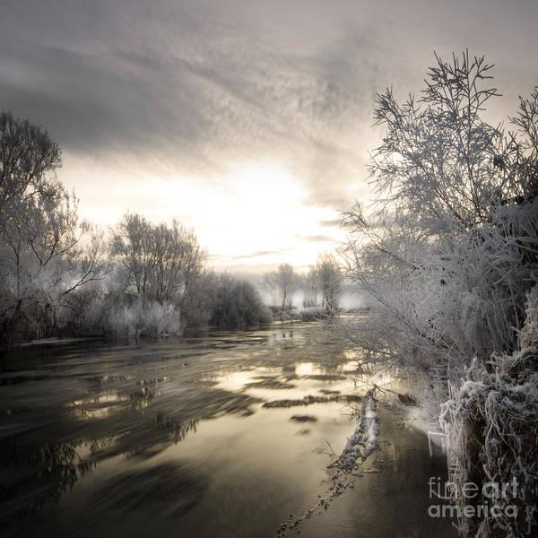Wall Art - Photograph - The Wintery Tales by Angel Ciesniarska