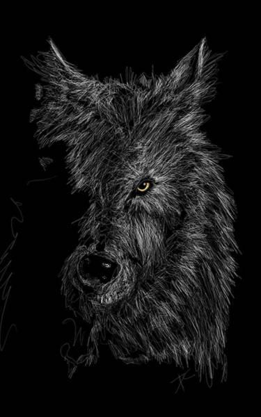 Digital Art - The Wolf In The Dark by Darren Cannell