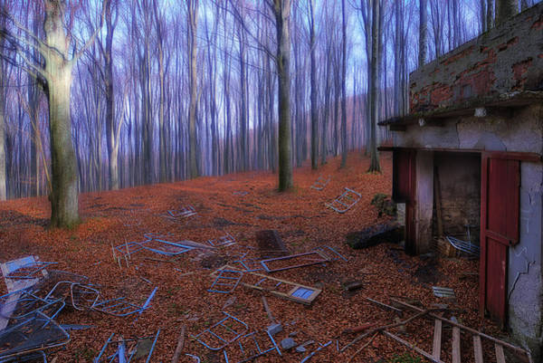 Photograph - The Wood A La Magritte - Il Bosco A La Magritte by Enrico Pelos