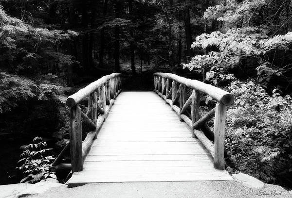 Photograph - The Wooden Bridge In Black And White by Trina Ansel