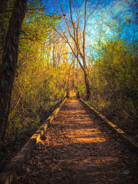 Digital Art - The Wooden Trail by Daniel Eskridge