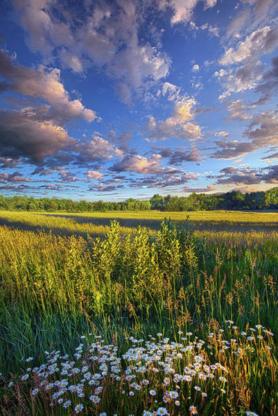 Photograph - The World Is Quiet Here by Phil Koch