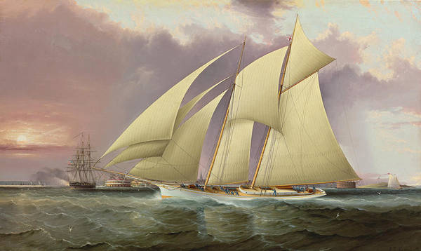 Wall Art - Painting - The Yacht Magic Defending America's Cup by James Edward Buttersworth