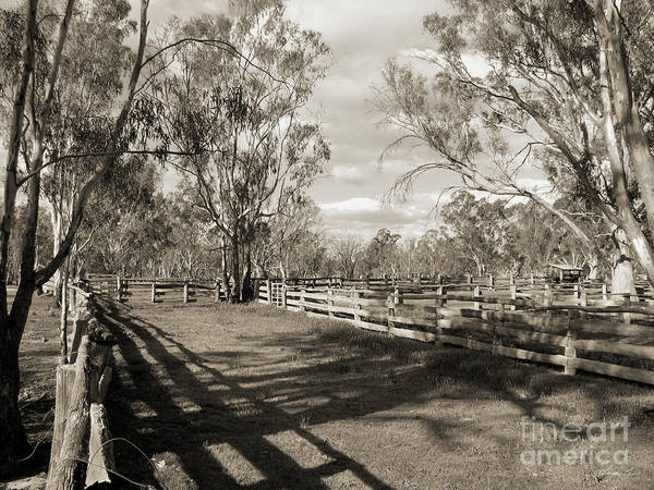 Stockyards Photograph - The Yards by Linda Lees