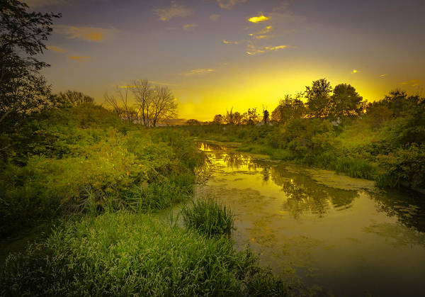 Photograph - The Yellow Creek by Francisco Gomez