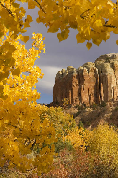 Four Corners Wall Art - Photograph - The Yellow Leaves Of Fall Frame A Rock by Ralph Lee Hopkins