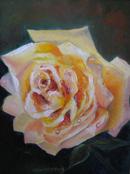 Wall Art - Painting - The Yellow Rose by Jan Harvey