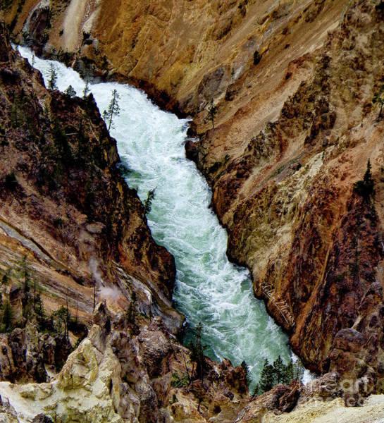 The Yellowstone Art Print