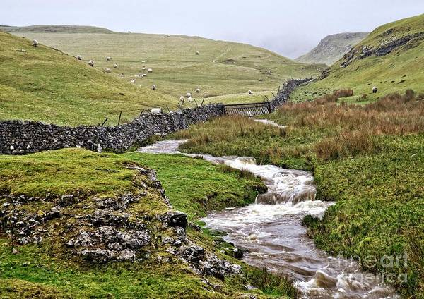 Photograph - The Yorkshire Dales by Martyn Arnold