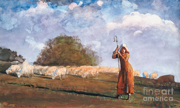 The Shepherdess Wall Art - Painting - The Young Shepherdess by Winslow Homer
