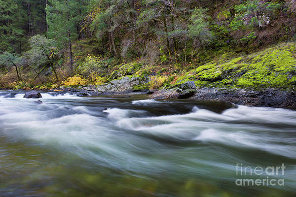 Yuba River Photograph - The Yuba River by Leslie Wells