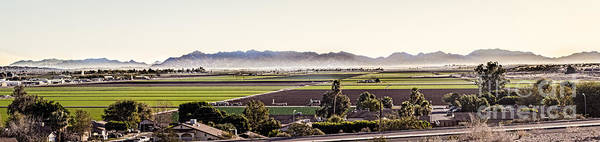 Yuma Photograph - The Yuma Valley by Robert Bales
