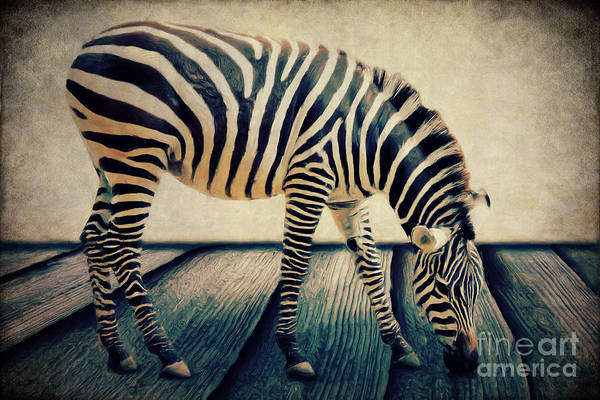 Digital Art - The Zebra Portrait by Angela Doelling AD DESIGN Photo and PhotoArt