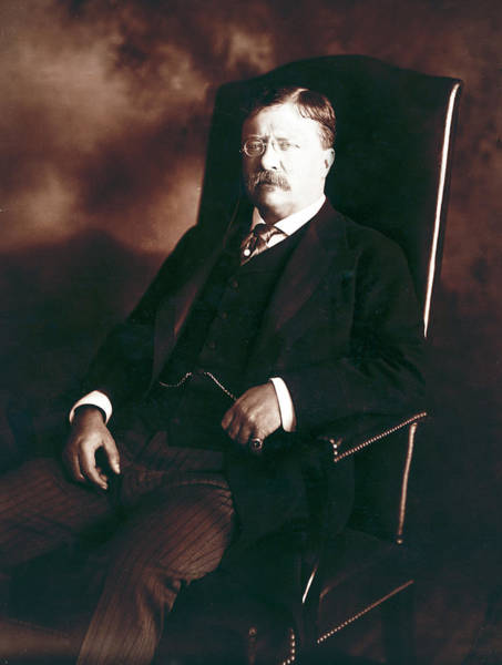 Wall Art - Photograph - Theodore Roosevelt - President Of The United States  by International  Images