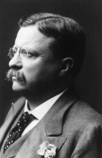 Photograph - Theodore Roosevelt 1906 by Artistic Panda