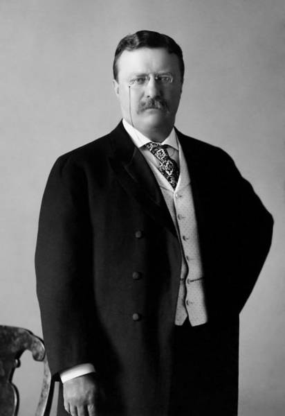 Wall Art - Photograph - Theodore Roosevelt - 26th President Of United States Of America by War Is Hell Store