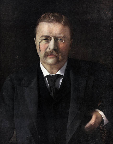 Mustache Painting - Theodore Roosevelt by American School