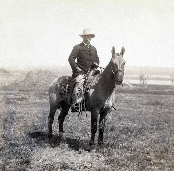 Wall Art - Photograph - Theodore Roosevelt Horseback - C 1903 by International  Images