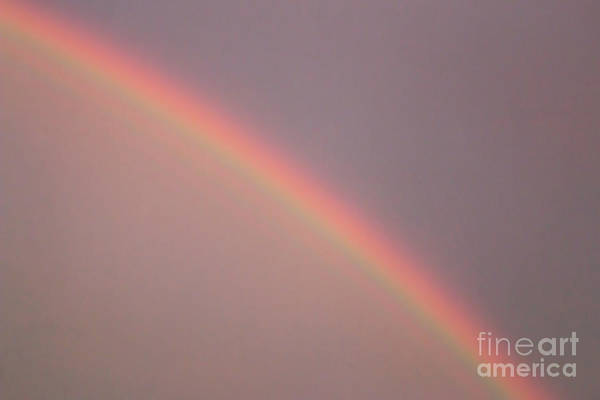 Photograph - There Are No Rainbows Without Rain by Ana V Ramirez