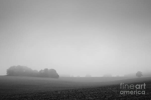 Wall Art - Photograph - There Are Two Sides To Every Field by Richard Thomas