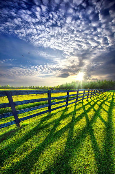 Country Garden Photograph - There Is More That Unites Than Divides by Phil Koch