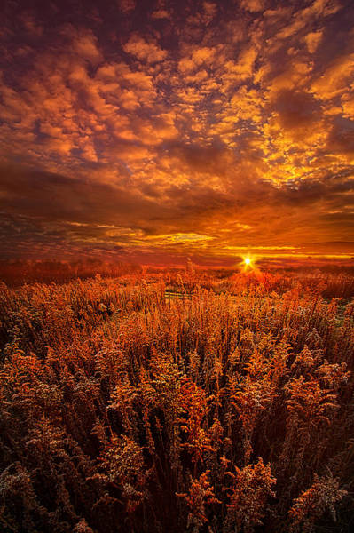 Photograph - There Is No Sign To Say You Have Arrived by Phil Koch