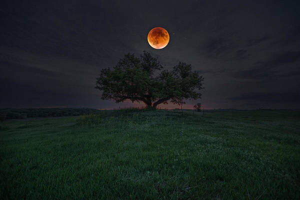 Photograph - There Will Be Blood by Aaron J Groen