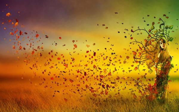 Fall Colors Digital Art - They Call Me Fall by Karen Koski