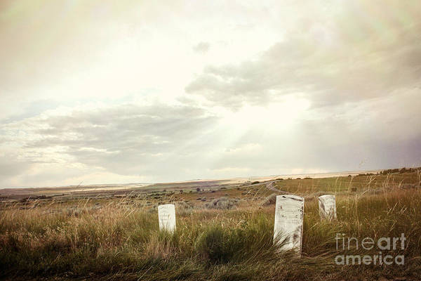 Indian Burial Ground Photograph - They Stand Alone by Sandy Adams