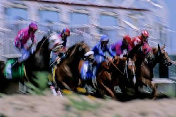 Jocky Photograph - They're Off by Andrew Greene