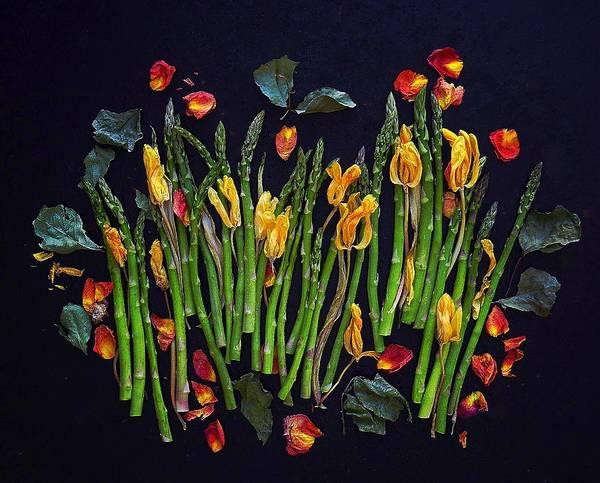 Think Spring Asparagus Art Print