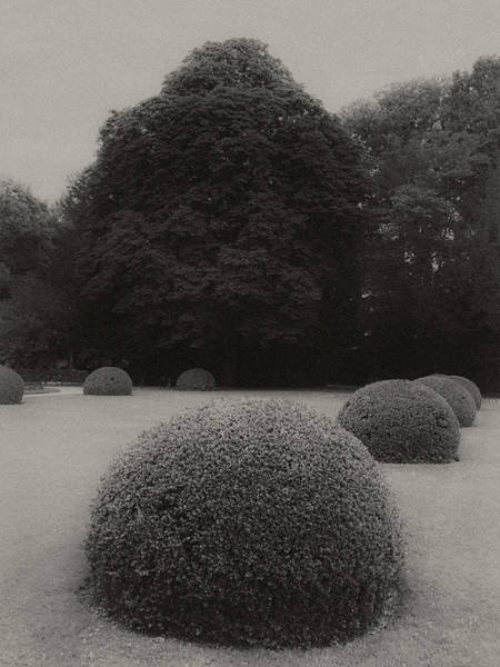 Wall Art - Photograph - Thinking Of Atget by Joseph Smith