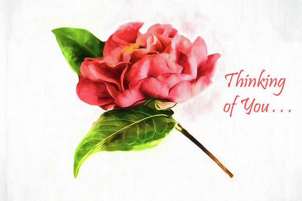 Photograph - Thinking Of You - Camellia Card by Kay Brewer