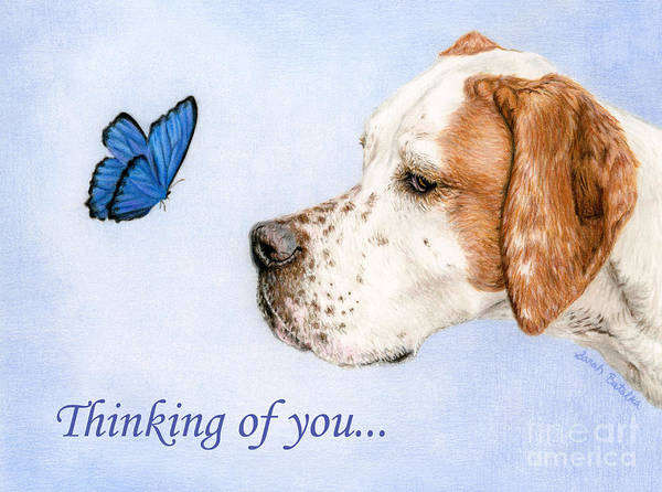 Wall Art - Painting - Thinking Of You Cards- Dog And Butterfly by Sarah Batalka
