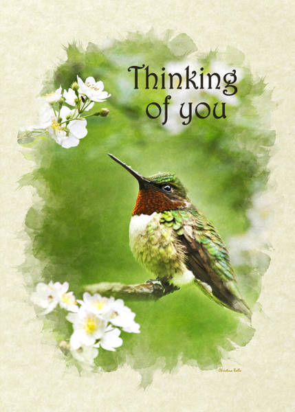 Mixed Media - Thinking Of You Hummingbird Flora Fauna Greeting Card by Christina Rollo