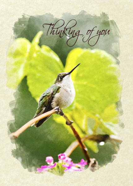 Mixed Media - Thinking Of You Hummingbird In The Rain Greeting Card by Christina Rollo