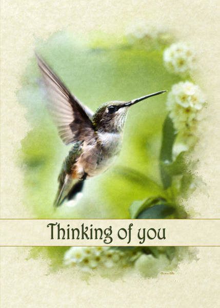 Mixed Media - Thinking Of You Peaceful Love Hummingbird Greeting Card by Christina Rollo