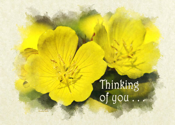 Photograph - Thinking Of You Primrose Flowers Greeting Card by Christina Rollo