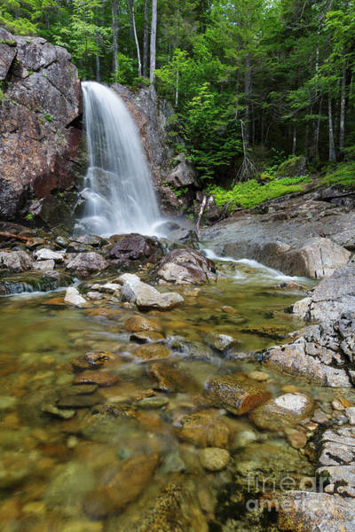 Photograph - Thirteen Falls - Pemigewasset Wilderness, New Hampshire by Erin Paul Donovan