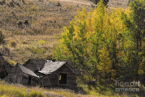 Photograph - This Old House by Jim Garrison