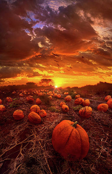 Photograph - This Our Town Of Halloween by Phil Koch