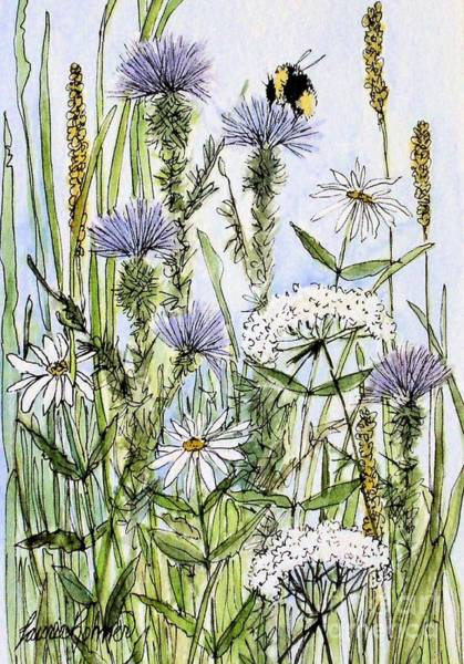 Thistles Daisies And Wildflowers Art Print