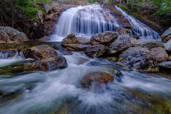 Photograph - Thompson Falls, Pinkham Notch, Nh by Jeff Sinon