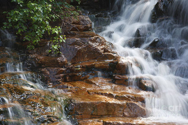 Pemigewasset River Wall Art - Photograph - Thoreau Falls - White Mountains New Hampshire  by Erin Paul Donovan