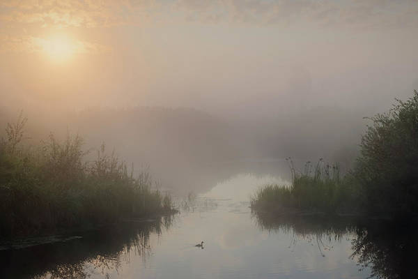 Photograph - Thorhild County Pond by Dan Jurak